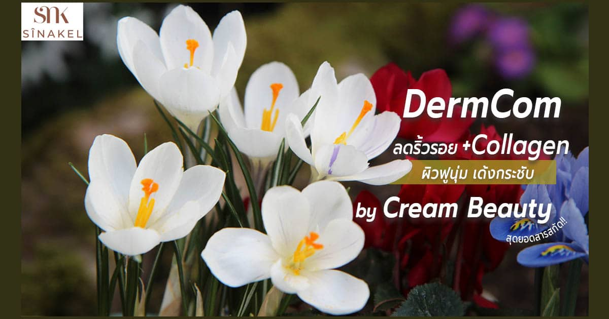 Dermcom in Sinakel Serum